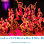 My round up of 2015: Dancing, Dogs & Other Delights