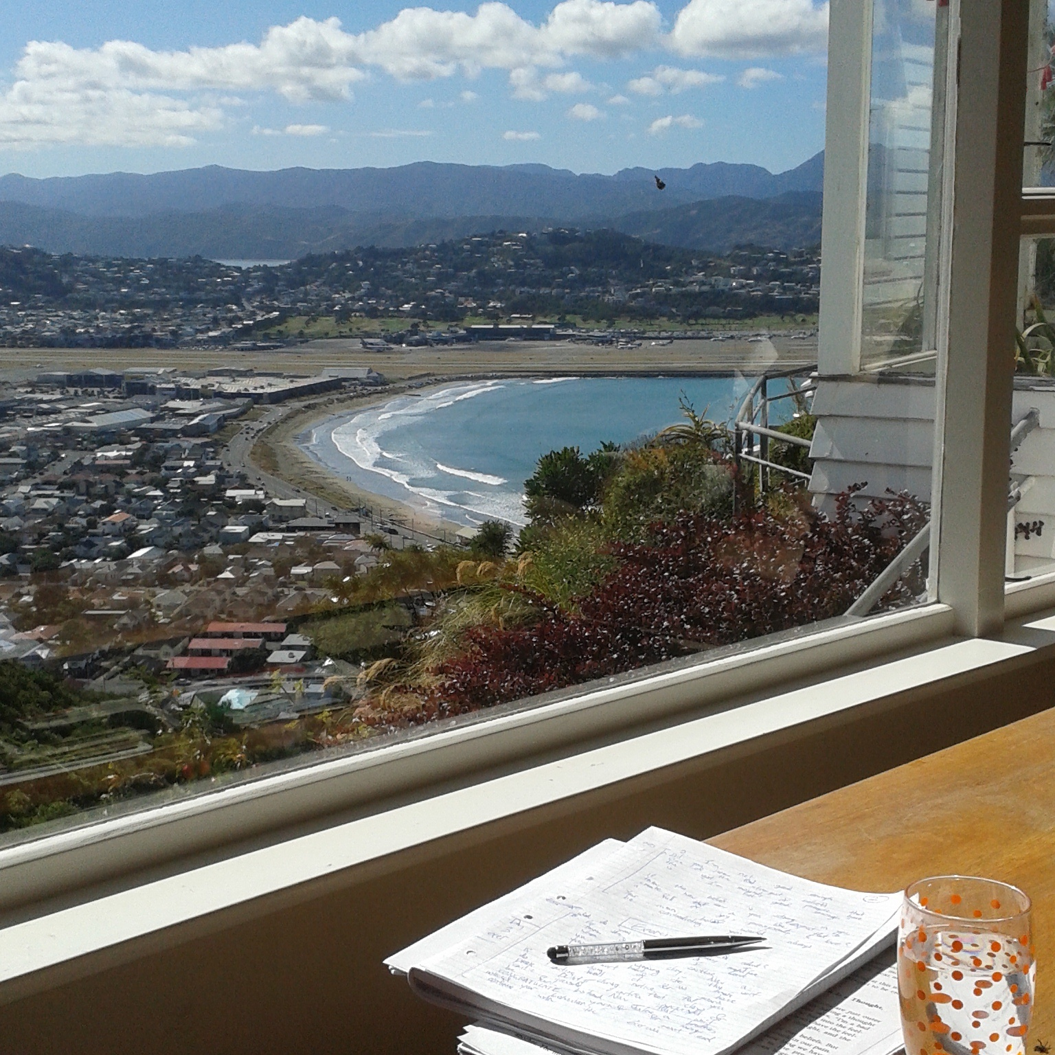 What does living the laptop lifestyle look like for you for House sitter wellington