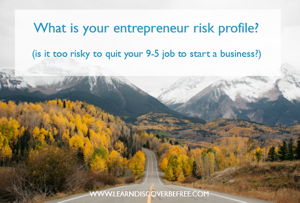 What is your entrepreneur risk profile