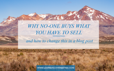 Why No-one Buys What You Have To Sell (and how to change this in a blog post)