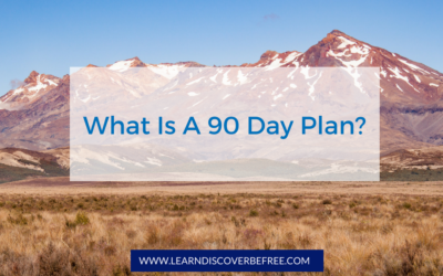 What is a 90 Day Plan?