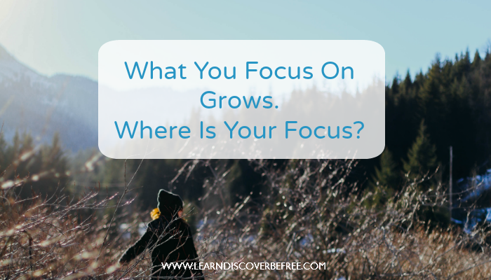 What You Focus On Grows. Where Is Your Focus?