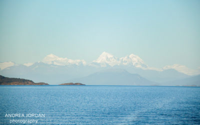 Sailing Down The Beagle Channel