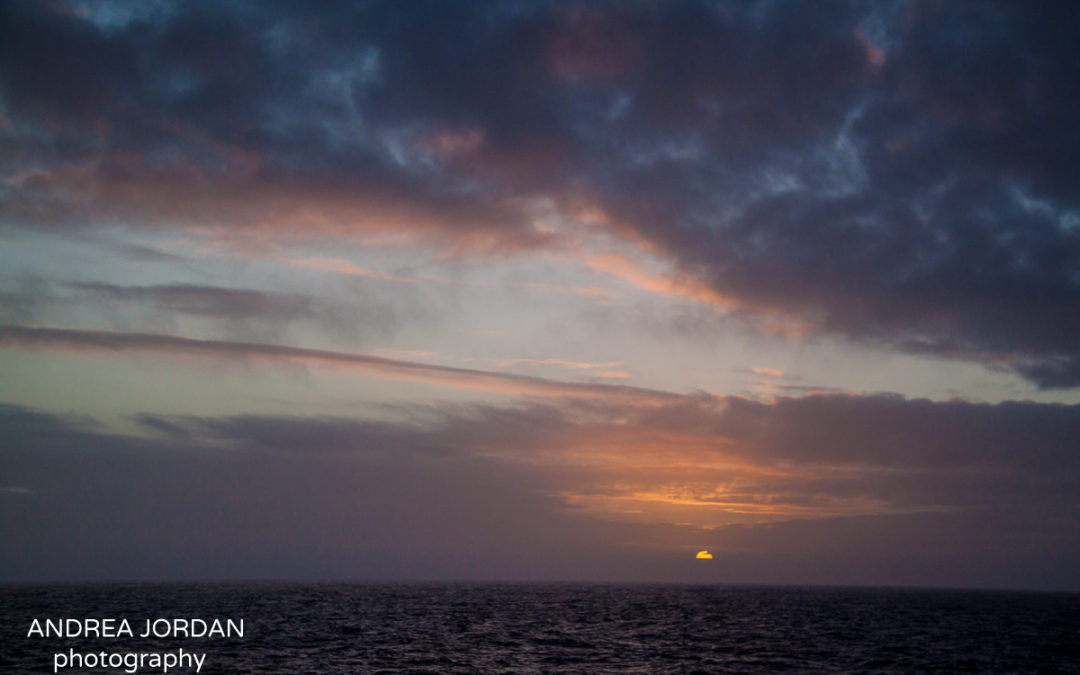 Crossing The Drake Passage (and having my birthday at sea)