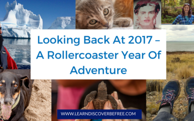 Looking Back At 2017 – A Rollercoaster Year Of Adventure