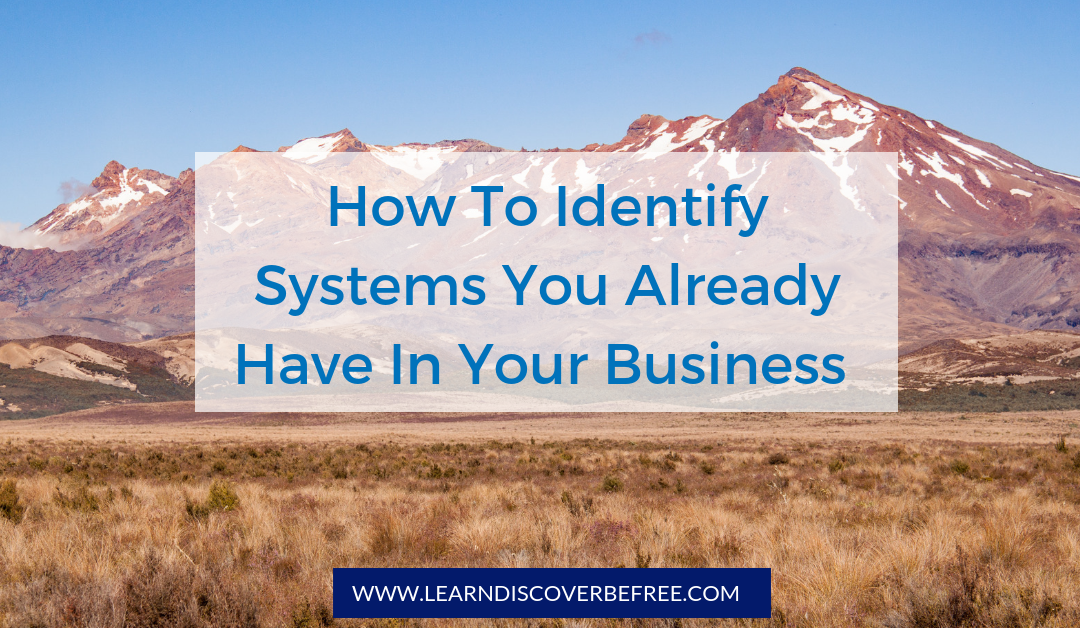 How To Identify Systems You Already Have In Your Business