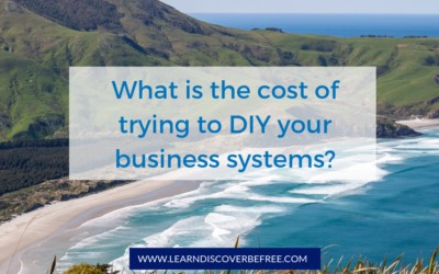 What is the cost of trying to DIY your business systems?