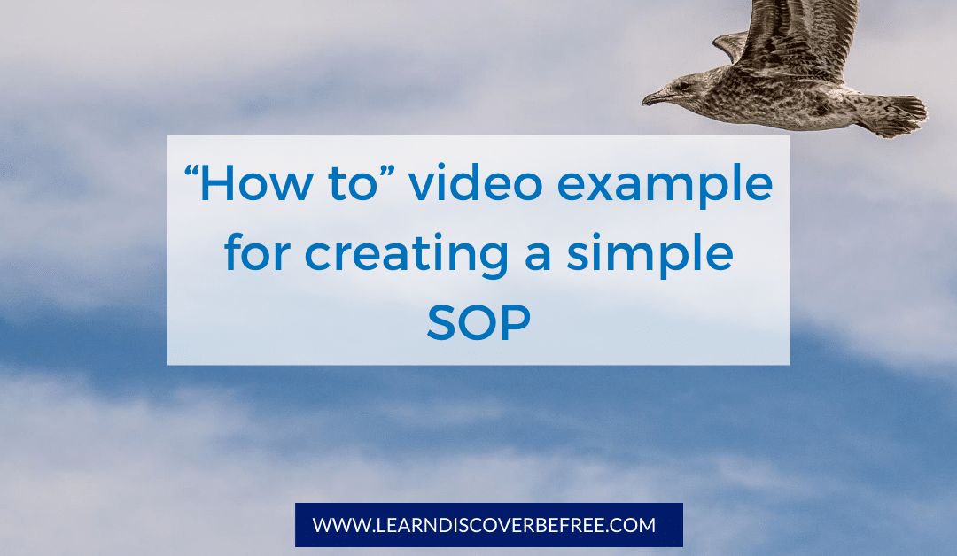 """""""How to"""" video example for creating a simple SOP"""